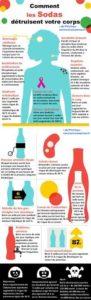 les-limonades-dans-votre-corps